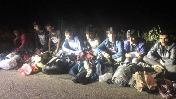 Nyolc határsértőt tartóztattak fel Csongrád megyében