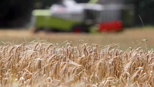 Nagy lehetőségek rejlenek Magyarország digitális agrárstratégiájában