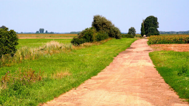 Újabb lehetőség az agráriumban - Egyszerűsödik a földutak építése!